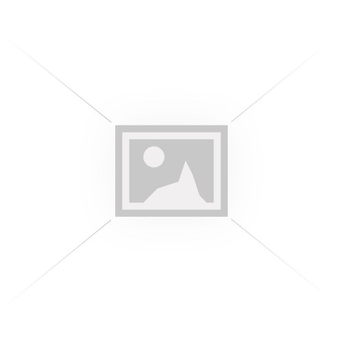 ABBOSYNAGIS 100 MG/ML