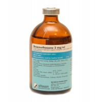 DEXAMETHASONE 2 MG